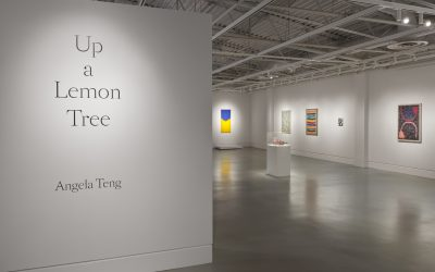ANGELA TENG: UP A LEMON TREESeptember 14 - November 3, 2019